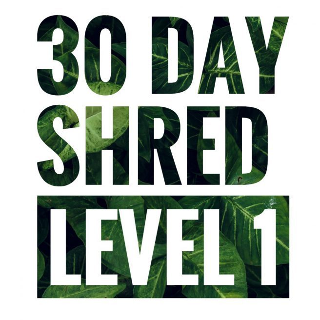30 Day Shred | Level 1