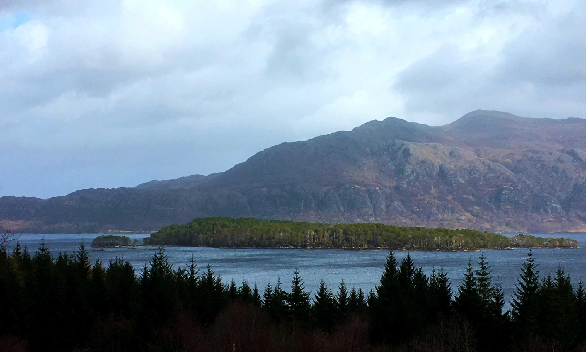 Der Blick auf die Insel im Loch Maree