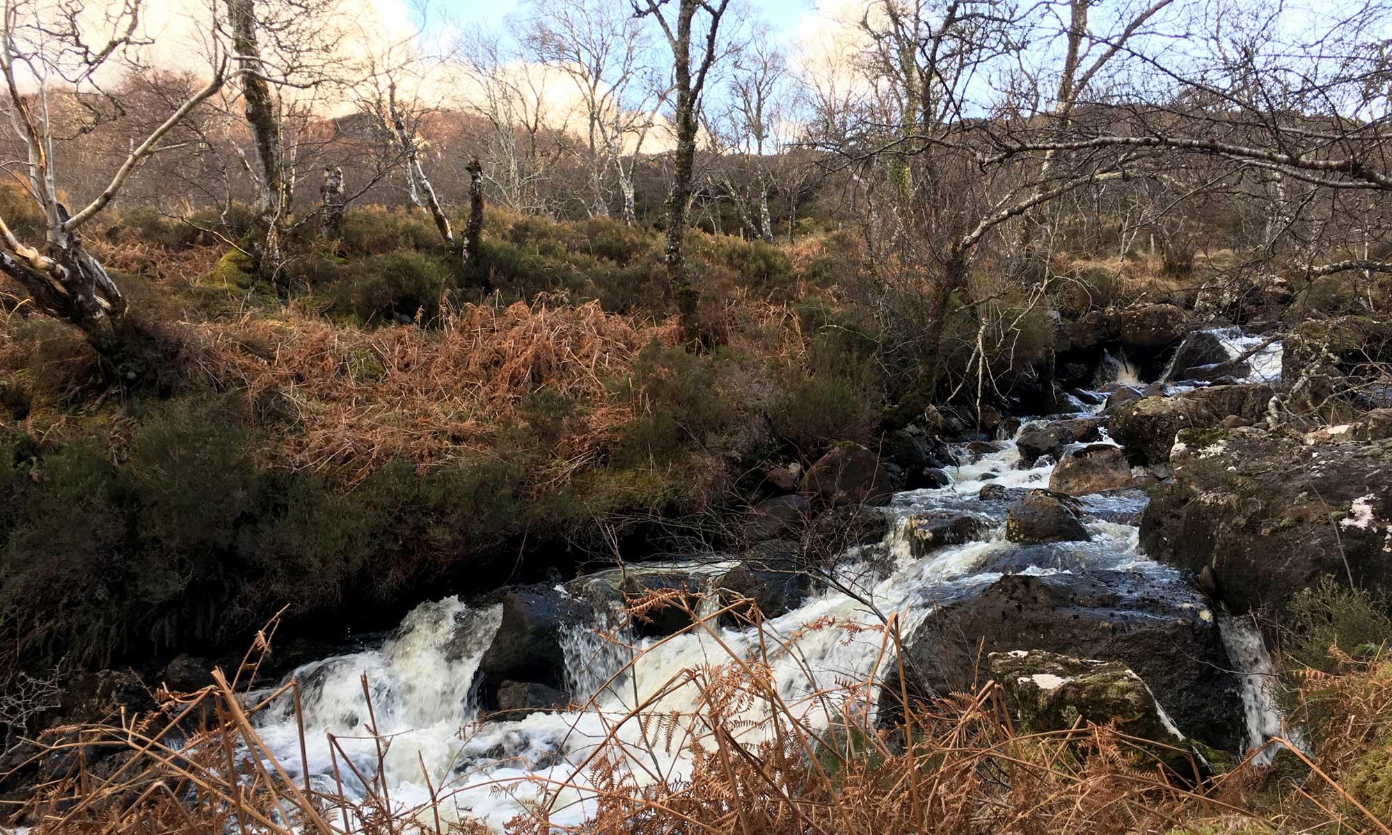 Am Ufer des River Ewe