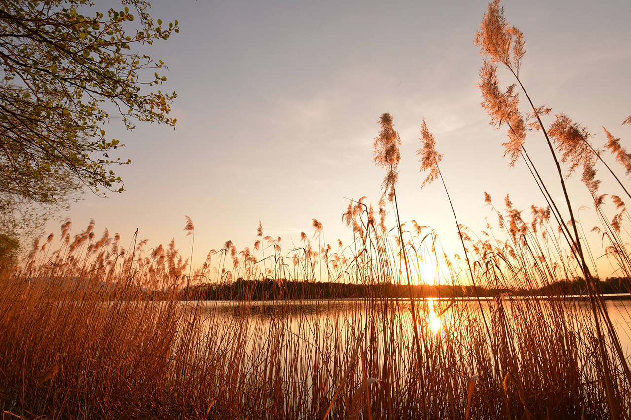 Sonnenuntergang am Abtsee
