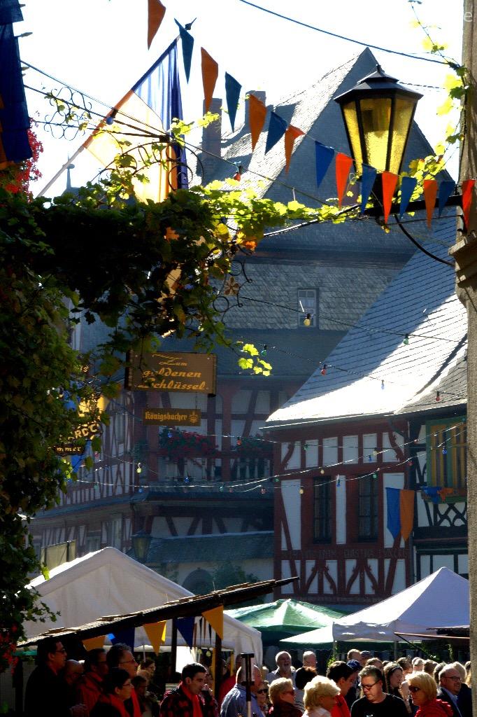 img 2181 - 4 Flüsse-Tour nach Braubach - Rheinsteig