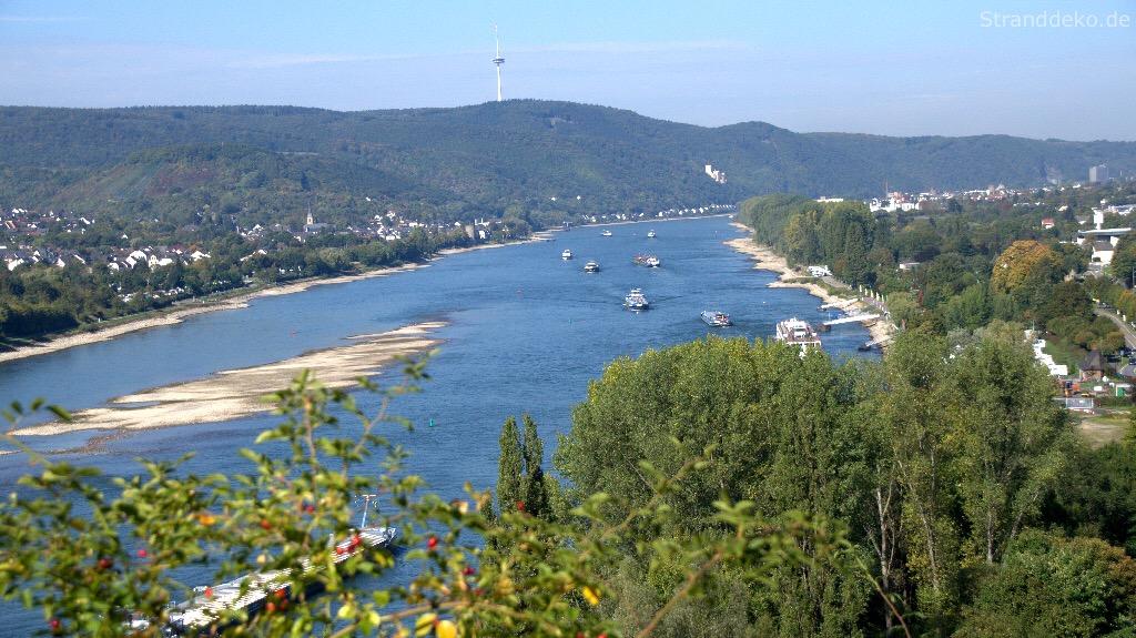 img 2189 - 4 Flüsse-Tour nach Braubach - Rheinsteig