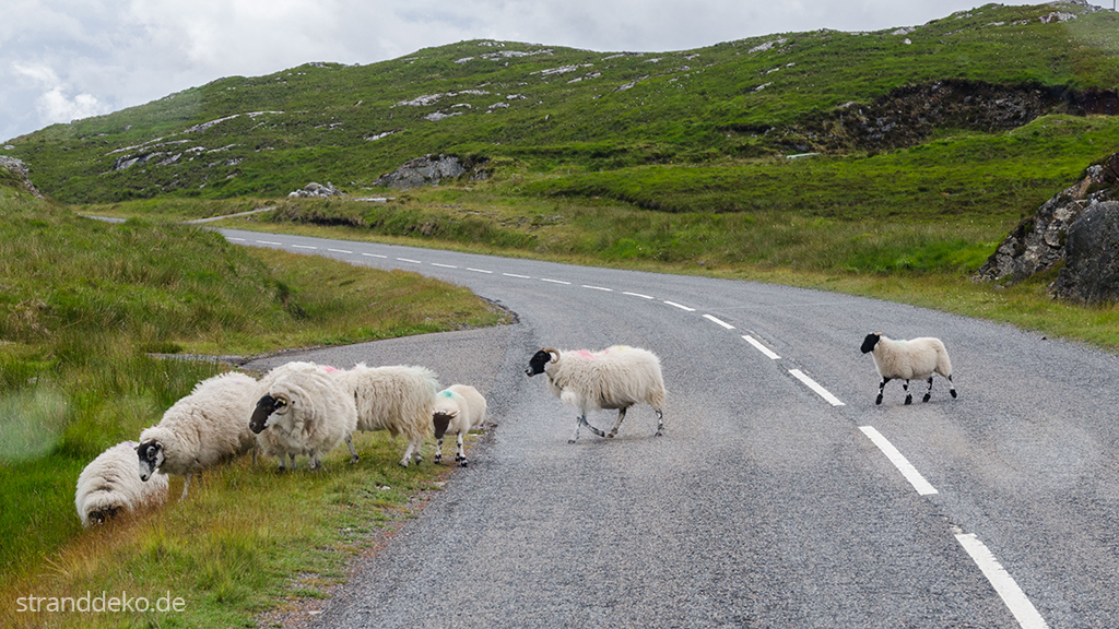 20160630 05 - Schottland II - Äußere Hebriden - Harris and Lewis