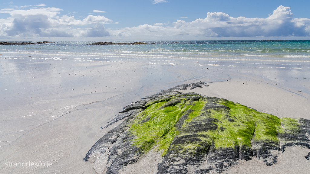 20160705 14 - Schottland III - Äußere Hebriden - Uist