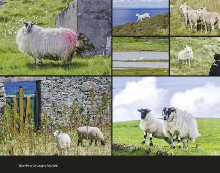 fotobuch schottland seite 73 - Schottland Fotobuch 2016