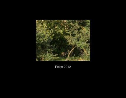 Polen2012 Seite 50 - Polen 2012 - Fotobuch