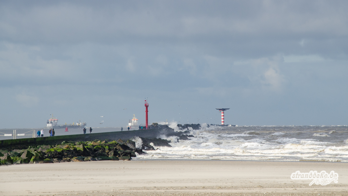 180204 Maassluis HoekvanHolland 034 - Maasluis und Hoek van Holland - 3 Stellplätze zum Schiffe gucken