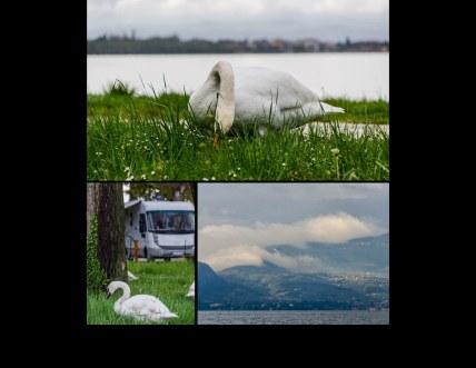 Italien2013_Seite_41