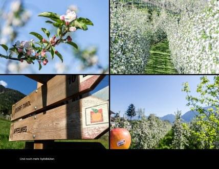 Italien2013 Seite 51 - Italien Fotobuch 2013