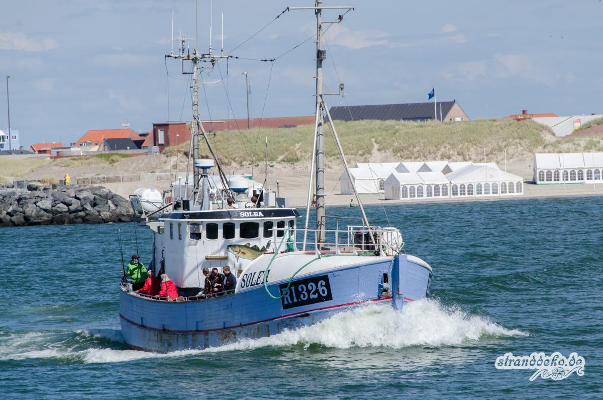 20140628 SCHWEDEN 1767 - Wir suchen den ultimativen Dänemark-Tipp von Euch!