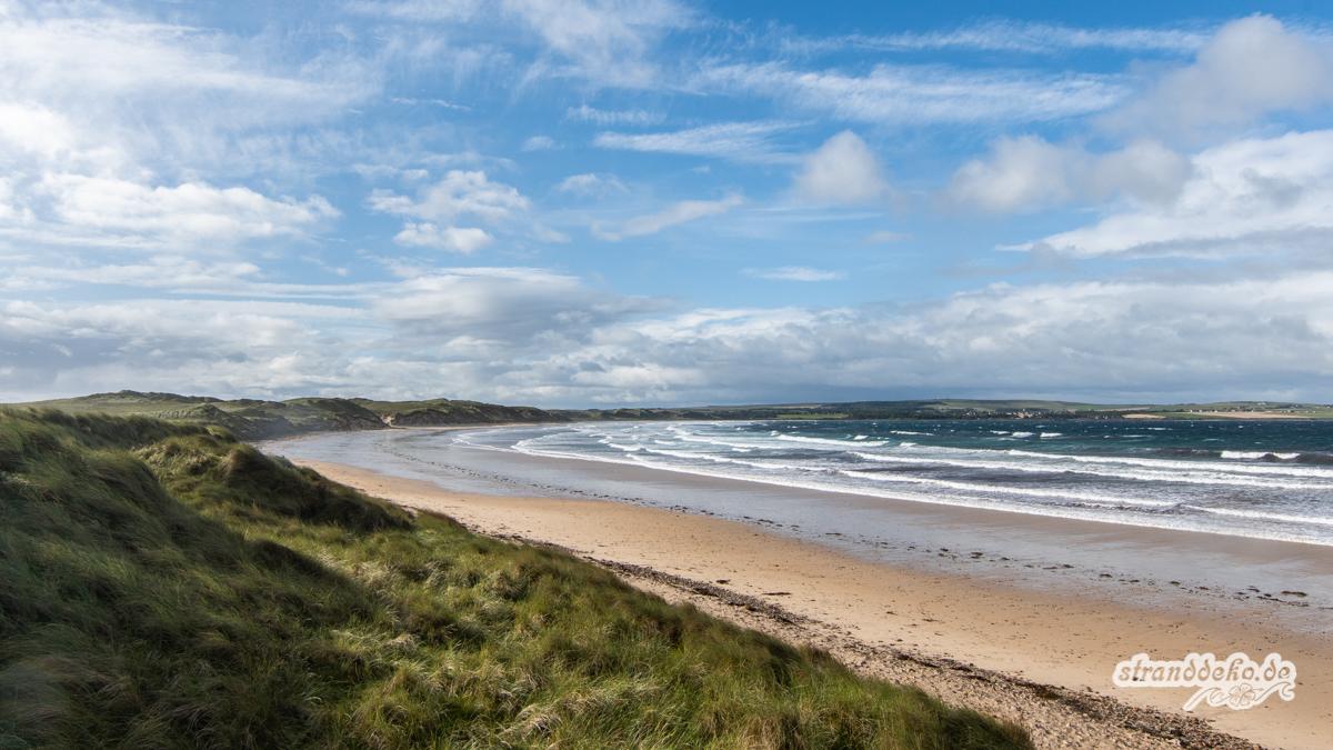 Schottland II 401 - Schottland - III - auf Strandsuche - Dunnet Beach, Thurso, Tongue