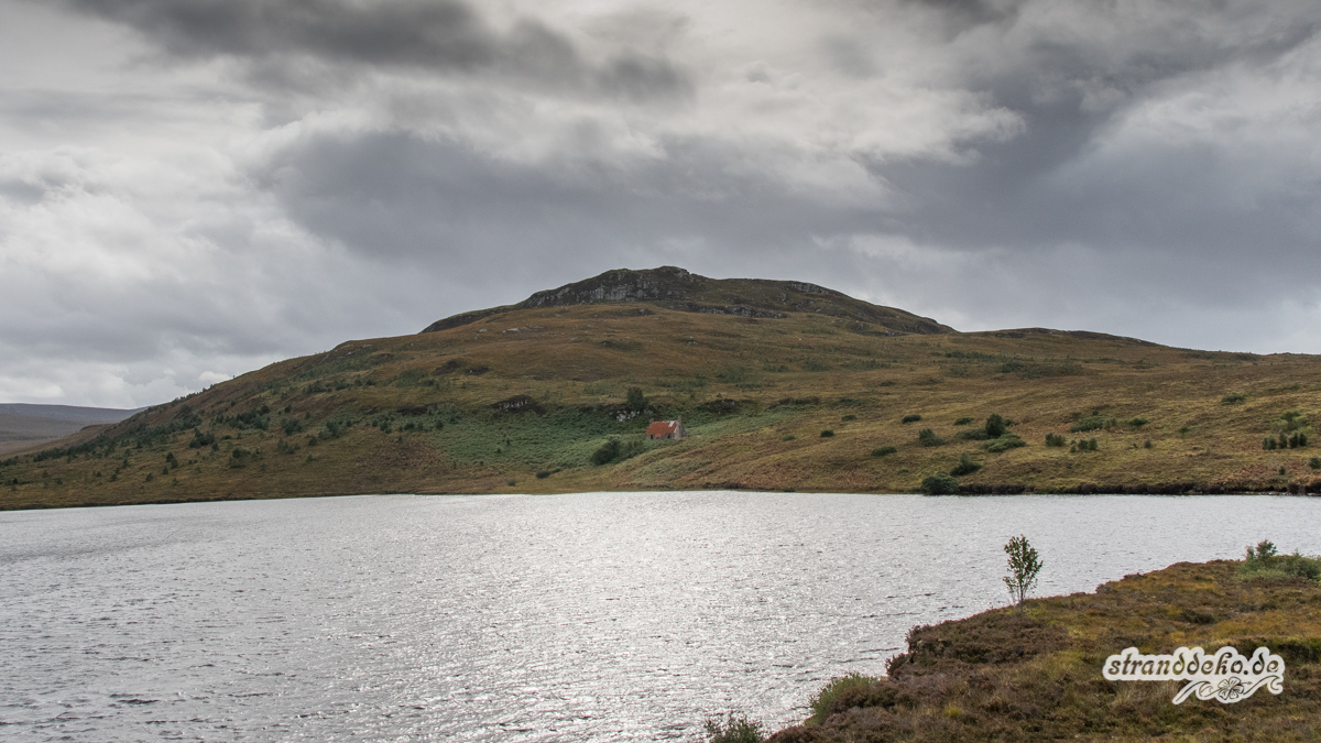 Schottland V 1148 - Schottland - V- Wandertage in Wester Ross