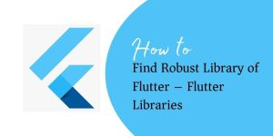 Fluter Libraries