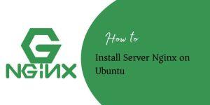 Server Nginx