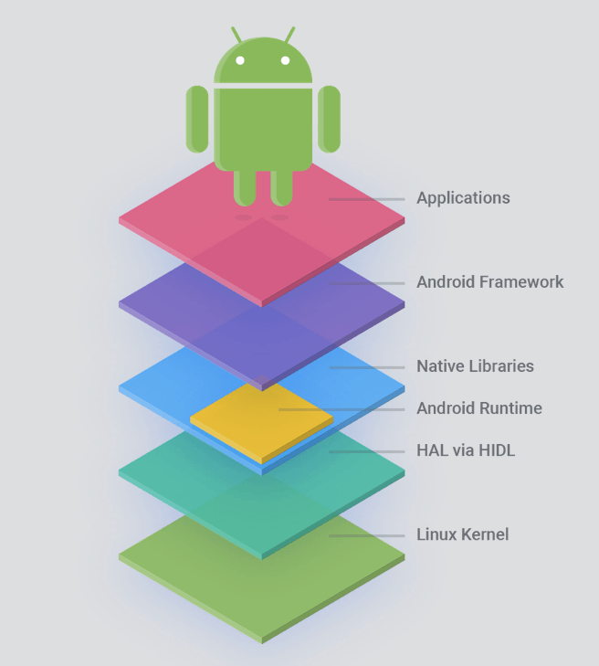 android structure