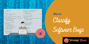 Classify Software Bugs
