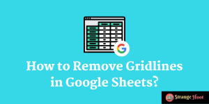 Remove Gridlines in Google Sheets