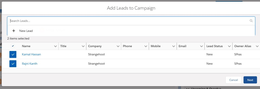 add leads to campaigns