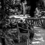 Jardin, Versailles