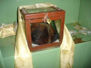 Το θεωρούμενο ως το δέρμα του Γέτι, όπως εκτίθεται για προσκύνημα στο μοναστήρι του Κουμτζούγκ