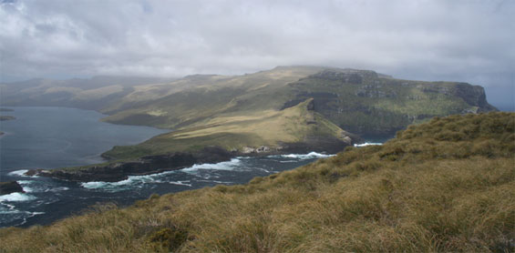 Τα νησιά Auckland στη Νέα Ζηλανδία