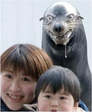 evil_seal