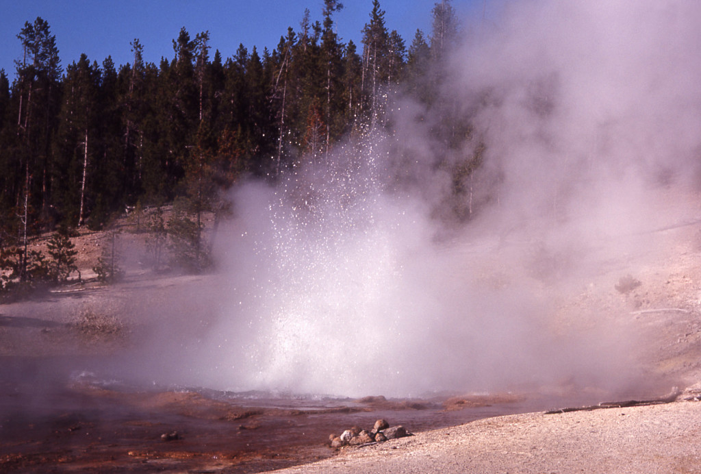 Echinus Geyser eruption, Echinus Geyser eruption 2017, Echinus Geyser eruption october 2017, Echinus Geyser eruption, Echinus Geyser in Yellowstone erupted on October 7 2017 after several years of dormancy, Echinus Geyser in Yellowstone erupted on October 7 2017 after several years of dormancy pictures, Echinus Geyser in Yellowstone erupted on October 7 2017 after several years of dormancy video