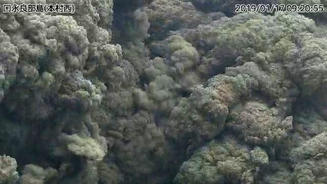 kuchunoerabujima volcano eruption january 17 2019, kuchunoerabujima volcano eruption january 17 2019pictures, kuchunoerabujima volcano eruption january 17 2019 video