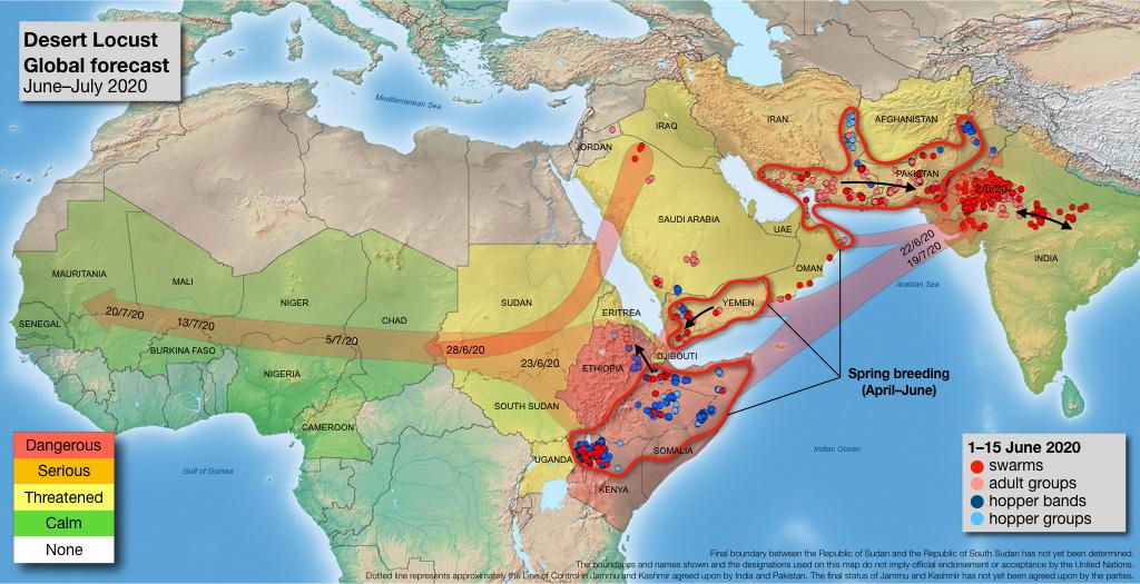 locust plague, locust plague africa, locust plague asia, locust plague july 2020