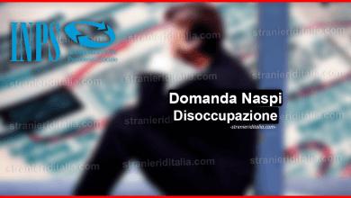 Photo of Disoccupazione Naspi 2019 Inps: come funziona e a chi spetta?