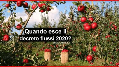 Photo of Decreto flussi 2020 (Regolarizzazione lavoratori stranieri) | Stranieri d'Italia