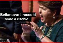 Photo of Il ministro Bellanova: regolarizzare lavoratori stranieri!