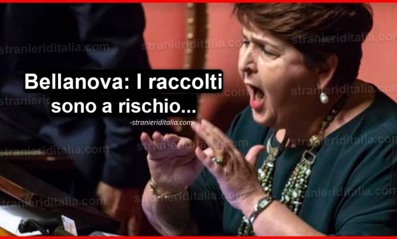 Il ministro Bellanova: regolarizzare lavoratori stranieri!