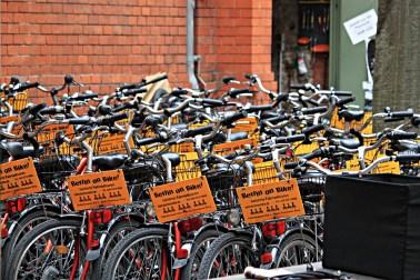Berlin on Bike 2