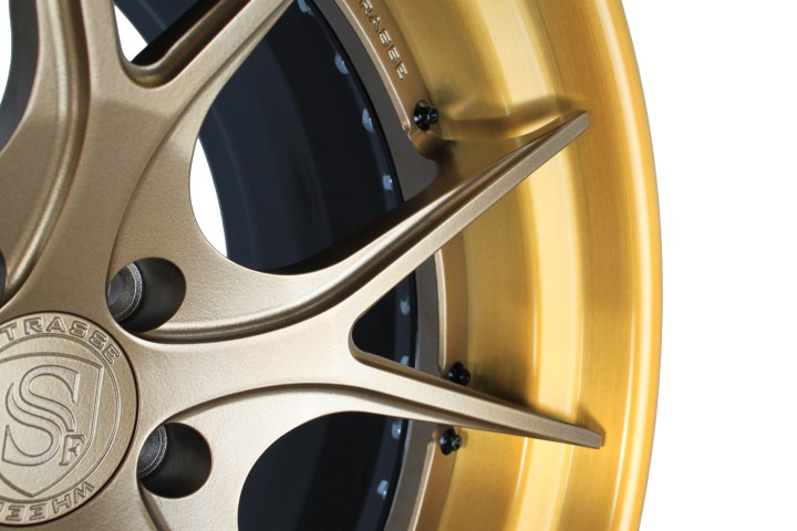 SM5R Deep Concave FS - Satin Bronze & Gloss Brushed Golden Bronze 5