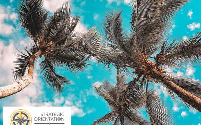 3 Strategies for Business Growth