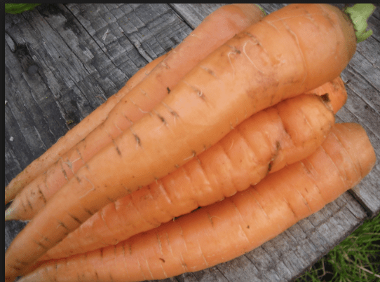 Carrots, a common food people eat when they're trying to lose weight