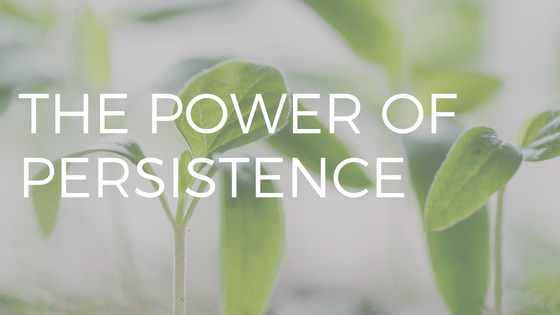 "TEXT ""THE POWER OF PERSISTENCE"" OVER PHOTO OF TINY GREEN PLANTS SPROUTING"