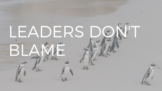 "THE TEXT ""LEADERS DON'T BLAME"" OVER  A PHOTO OF PENGUINS PLAYING ""FOLLOW THE LEADER"""