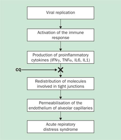 """Coronavirus : quand le """"Lancet"""" trouvait la chloroquine prometteuse"""