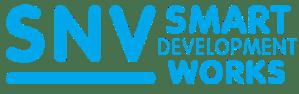 snv_smart_dev_works