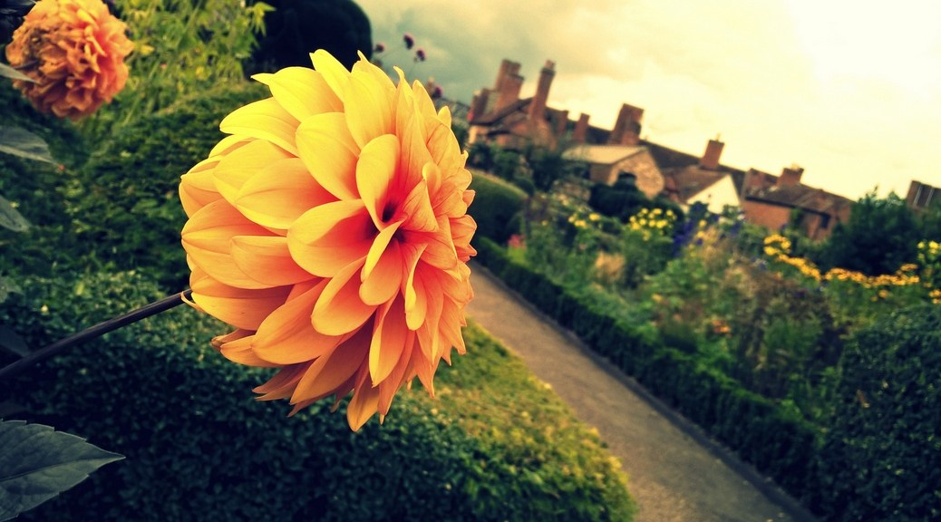 My personal best of Stratford-upon-Avon includes New Place Gardens ©Stratfordblog.com