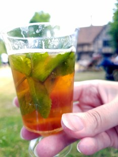 Fourth of July at Hall's Croft ©Stratfordblog.com