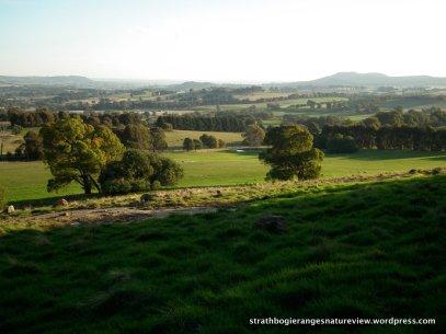 Boundary Hill (Boho South) to Mt Wombat.