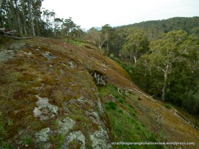 Looking north along the granite escarpment