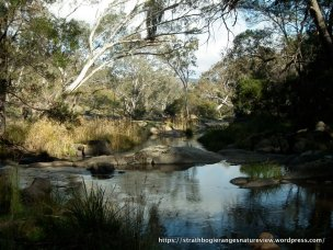 Fishing is illegal in this section of the creek, between Polly McQuinns and Gooram Rd bridge.