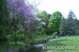 elmwoodPark