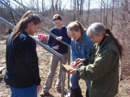 Teens help with greenhouse