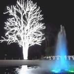 京都でクリスマスにイルミネーション・デートを成功させる穴場プランは?
