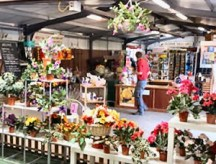 Giftware and Farm Shop